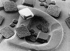 Alien NanoBlocks Will Reshape RFID
