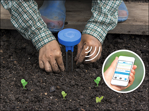 Wide Rollout of IoT Soil-Moisture Sensors in the Works
