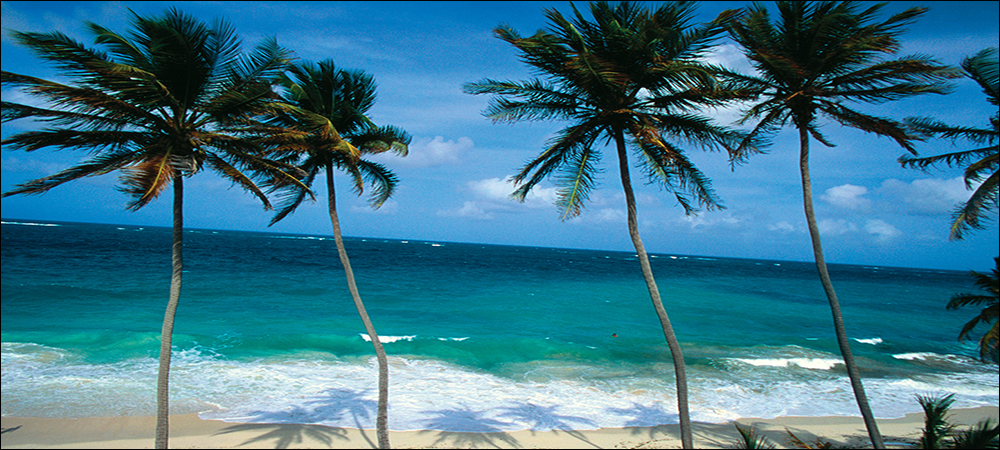 Barbados Cleans Up With RFID
